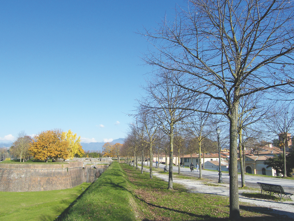 Lucca mura
