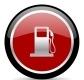 Ritratto di Gasoline