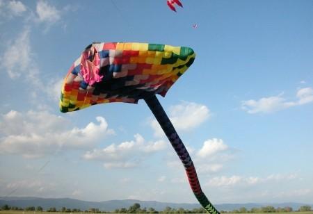 Voglia di volare camper life for Cielo ventoso camper e noleggio di cabine
